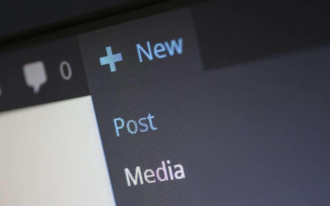 Wordpress new post type