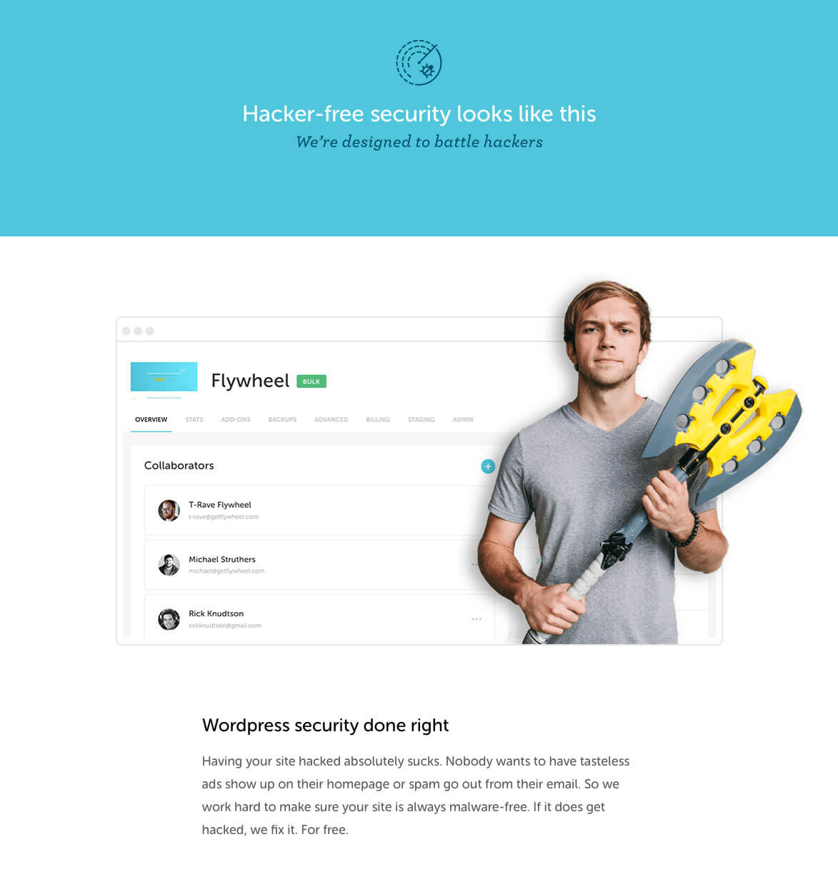 Flywheel wordpress security