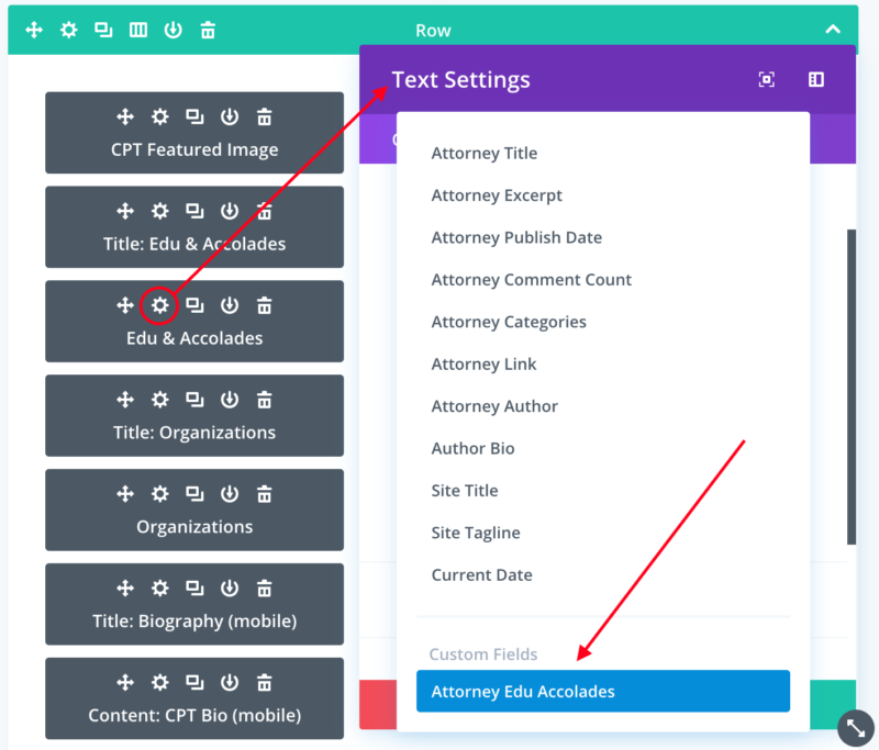 Divi custom fields hack