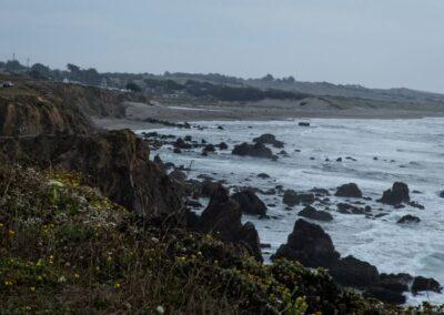 Pacific coastline 2014